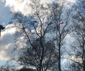 """""""Komm flieg mit mir"""" – selbstgebauter Wetterballon sorgt für faszinierende Luftbilder und spektakuläre Rettungsaktion"""